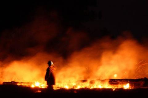 bushfire6