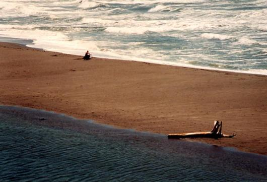pacific_coast1991