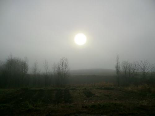 20111109_1