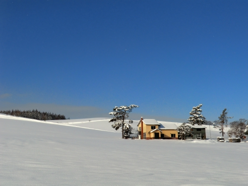 20111206_1