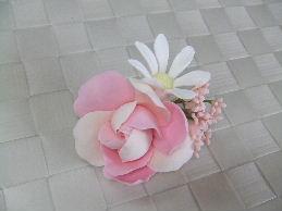 2010_02260081.jpg