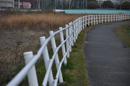 0223kawazoi2.jpg