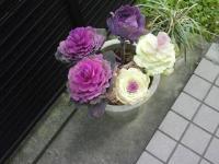 J0010011_20120326111748.jpg