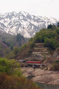 20090503-0030-9426d-oosirakawa-tagokura-1.jpg