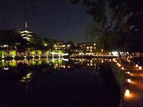 興福寺五重塔がライトアップされています