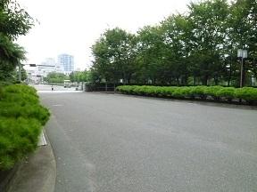 亜紀が手品を披露するシーンがここ 駐車場に土を入れて木を植え病院の中庭をつくりました