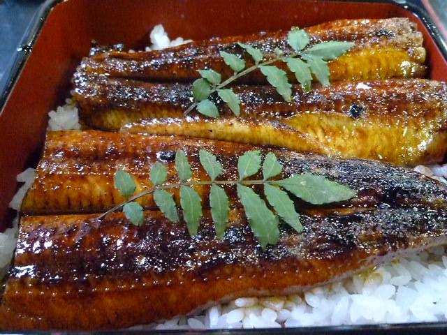 国産天然ウナギの鰻丼です