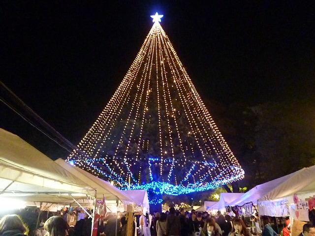 クリスマスツリーとはちがった美しさですね