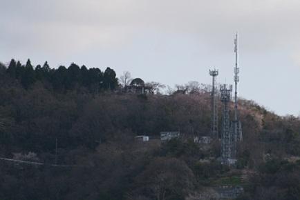 大空山桜40712S12