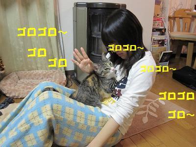 2010_03170024朝4