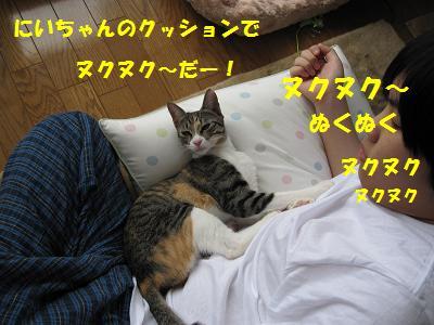 2010_03220077雪6