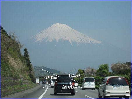 わぁ~い 富士山だ♪