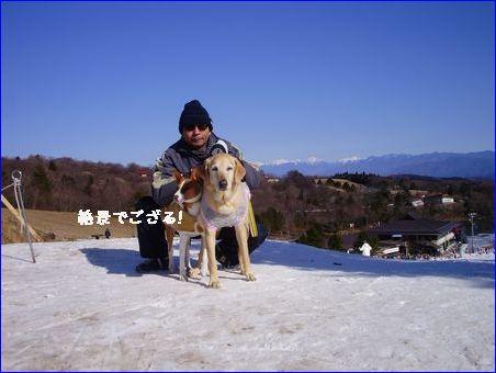 黒姫高原にスキーに行きたい。