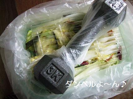 白菜漬けダンベル