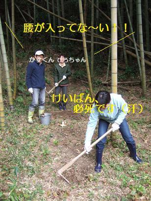 筍掘り声援
