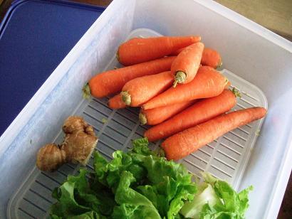 野菜タッパー保存
