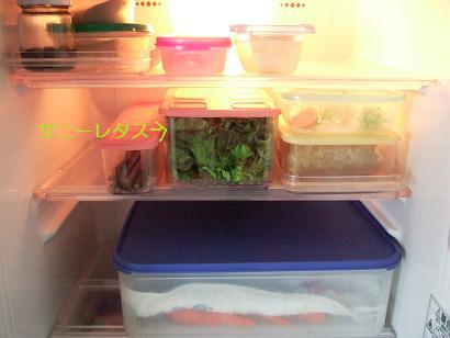 毛糸のパンダ冷蔵庫