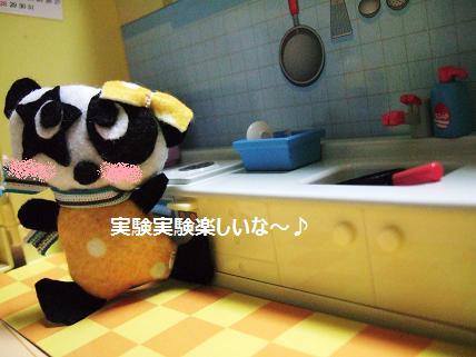 実験毛糸のパンダ