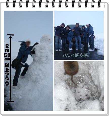 0111-13.jpg