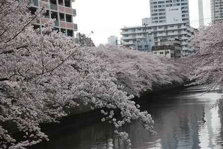 2010_03 193_R