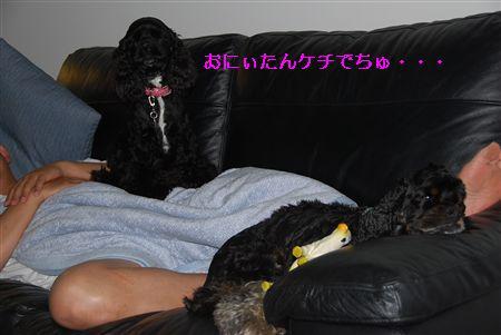 2010_05 074_R