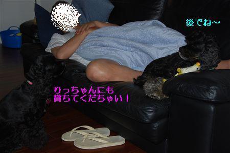 2010_05 073_R