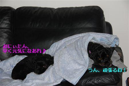 2010_05 149_R