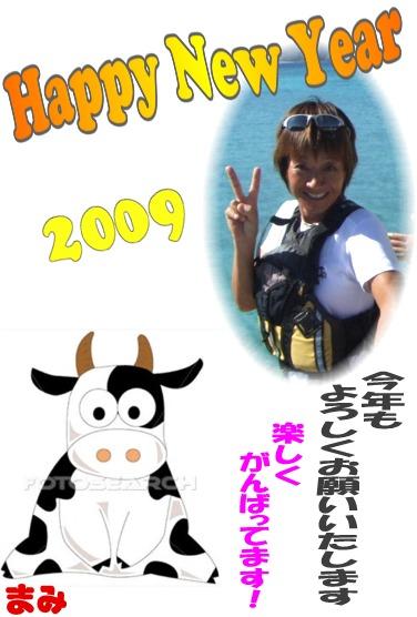 Picture4 2009年 うし 年賀状