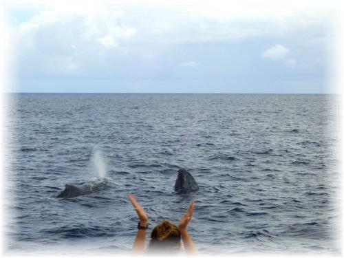 CIMG1374 もも&クジラ