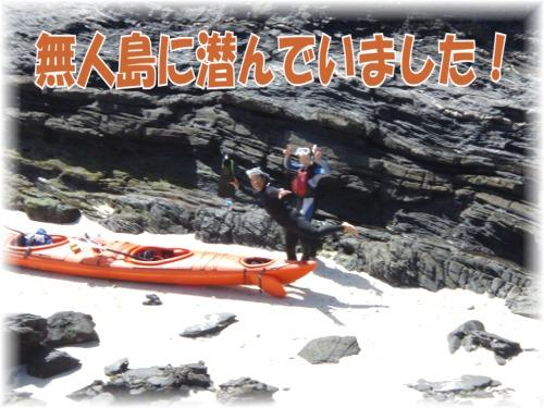 P3100391 無人島に潜んでいました