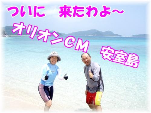 安室島よ~