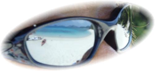 サングラスの海
