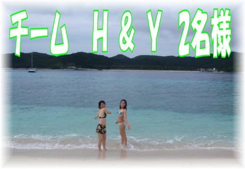 チーム H&Y