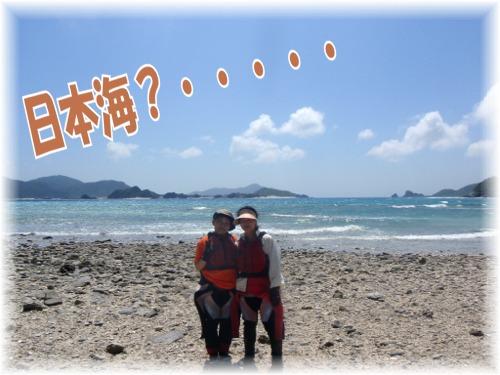 日本海?バック