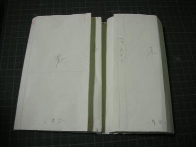 DSCN7120.jpg