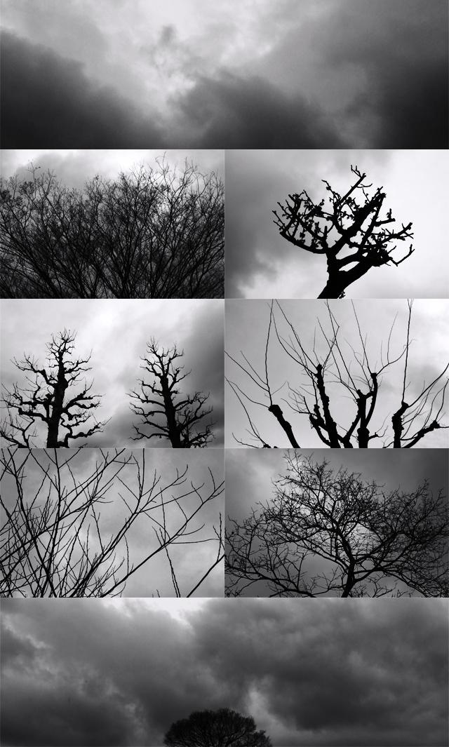 090322_001_曇り空