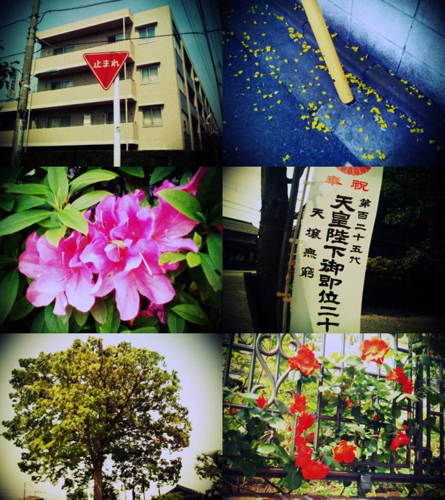 090509_002_iPhone