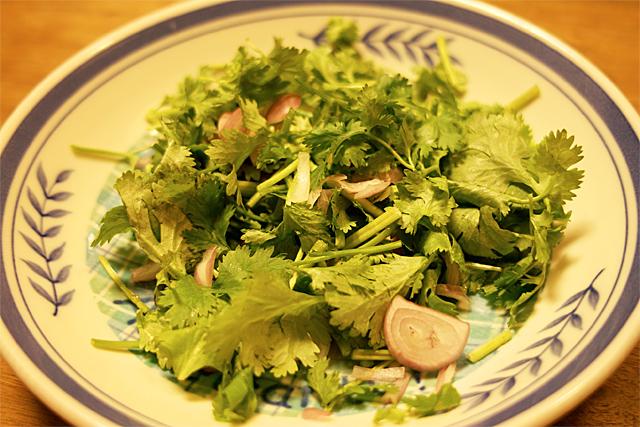 090610_003_パクチーのサラダ