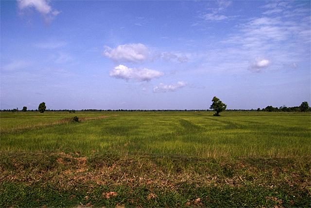 090726_008_カンボジアの平原