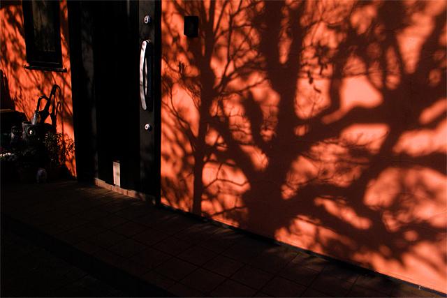 110305_001_西陽のあたる玄関先
