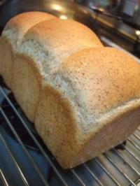 おうちで胚芽パン