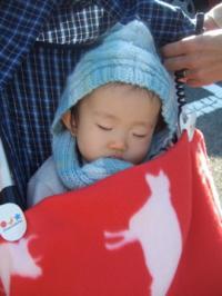 公園で熟睡