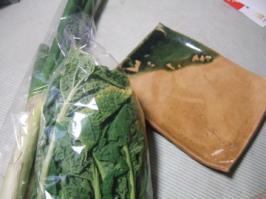 地物野菜市とアンティークバザールの収穫