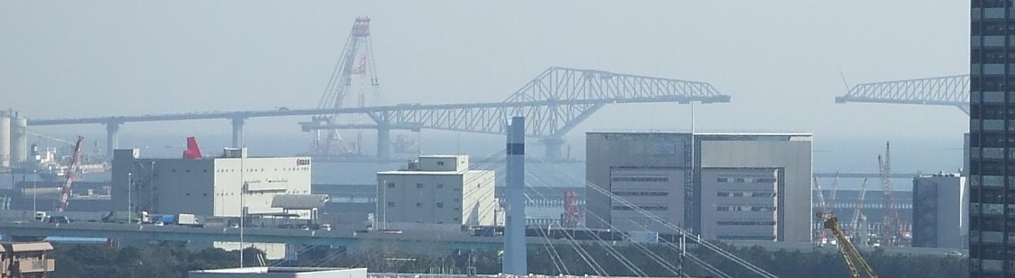 きむきむのぷーある日記_20110227東京ゲートブリッジ