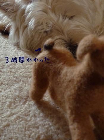 3_20090617215341.jpg