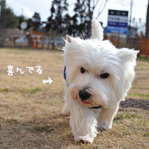 4_20100124144012.jpg