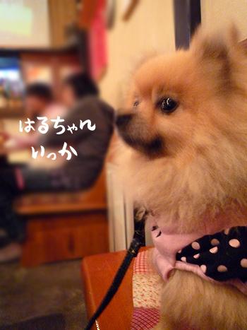 6_20090927233812.jpg
