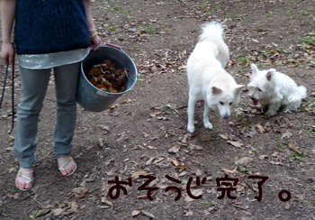 7_20091008221111.jpg