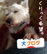 banner_20090520222522.jpg