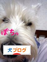 banner_20090604000454.jpg